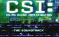 CSI 10, torna Bill Irwin; Jorja Fox anche lanno prossimo?
