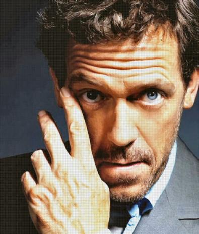 Hugh Laurie parla di House