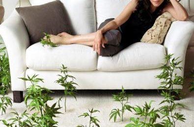 Weeds, la quarta stagione al via sulla Showtime dal 16 giugno