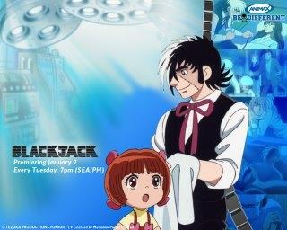 L'anime Black Jack da domani in prima tv su Hiro