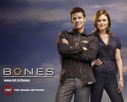 Programmi Tv stasera, oggi 28 novembre 2009: Affari Tuoi, C'è posta per te, Bones
