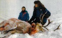 Sarah Palin protagonista di una serie/documentario sullAlaska?