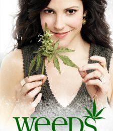Mark-Paul Gosselaar in Weeds 6, Tommy Lee in Californication 4