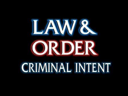 Programmi Tv stasera, oggi 28 agosto 2010: Anna Winter, L&O Criminal Intent