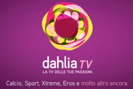 Dahlia Tv, le trasmissioni proseguono
