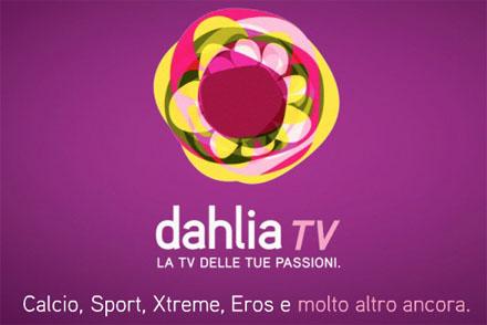Dahlia Tv, multa dall'Antitrust per scarse info sul fallimento