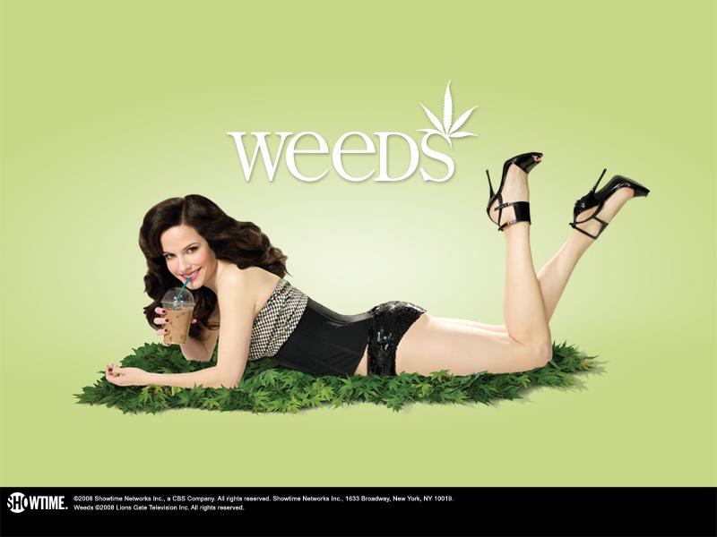 Weeds, Showtime pensa a un rinnovo biennale