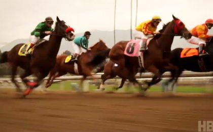 HBO cancella Luck: fatale la morte del terzo cavallo
