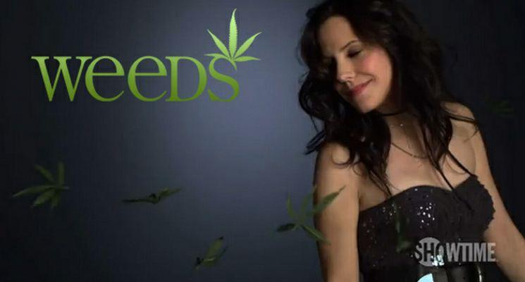 Weeds, Showtime conferma che l'ottava stagione sarà anche l'ultima