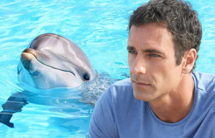 Ascolti TV mercoledì 22 maggio 2013: l'Auditel premia Come un delfino 2
