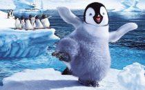 Stasera in TV, sabato 26 ottobre 2013: Ballando con le stelle, Happy Feet 2