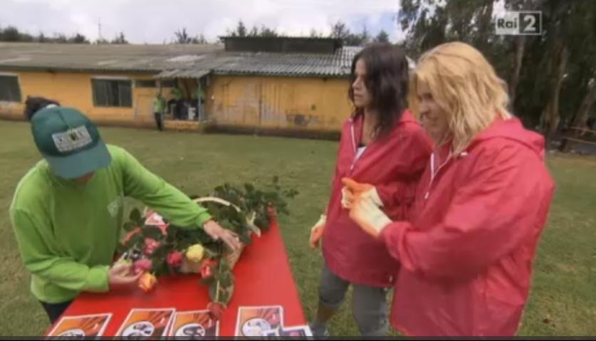 Le Professoresse consegnano le rose