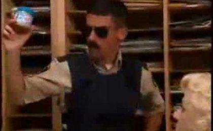 La comedy Reno 911! torna con nuovi episodi su Netflix?