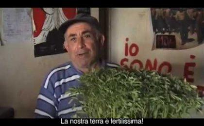 Current, Ascanio Celestini racconta Una Montagna di Balle