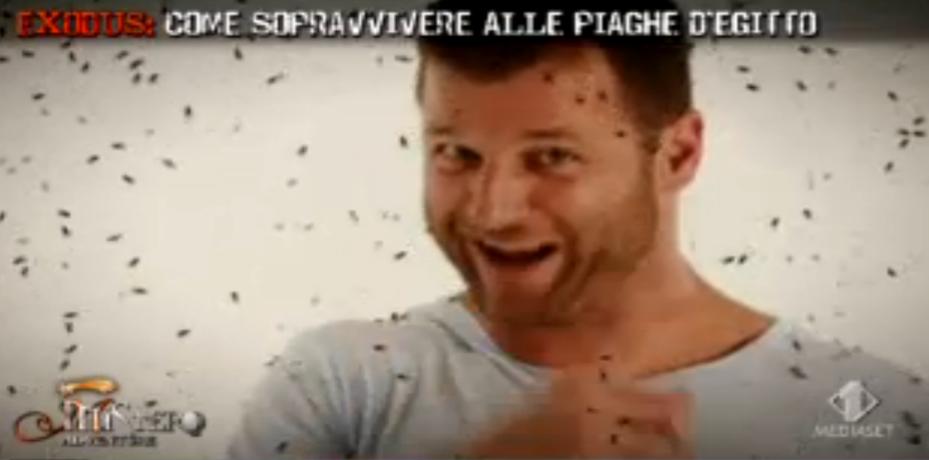 La piaga delle mosche
