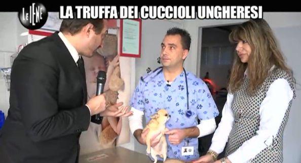 Casciari e medici