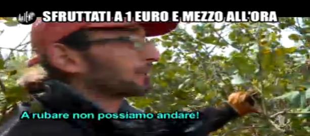 Pelazza, italiano accetta di lavorare a 1 euro all'ora