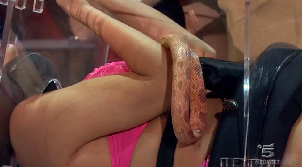 Serpente sul corpo di Francesca Cipriani