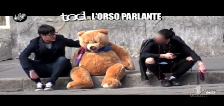 Tod L'Orso Parlante, Niccolò Torielli