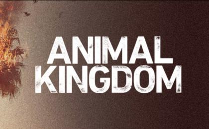 Animal Kingdom, Serie Tv: trama degli episodi in onda su Premium Crime dal 7 febbraio 2017