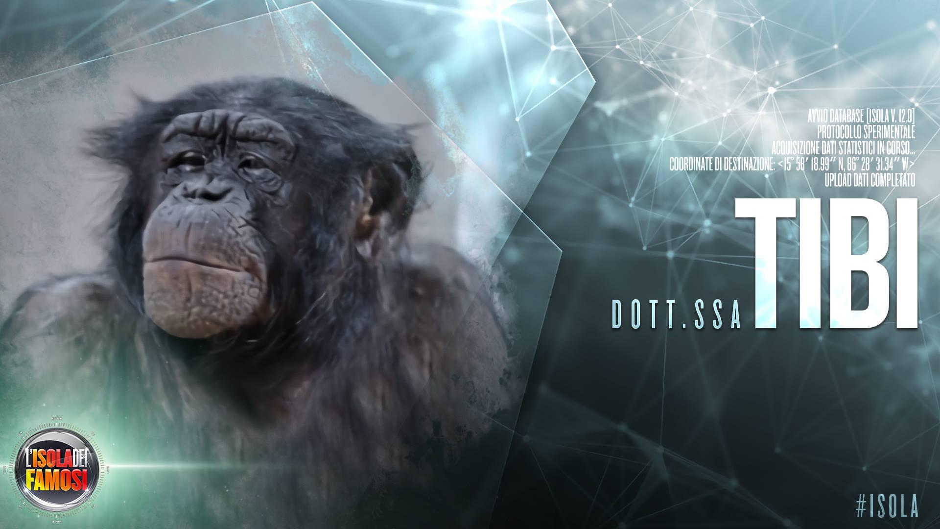 Isola dei famosi 12, La dottoressa Tibi: il comitato scientifico è… una scimmia!