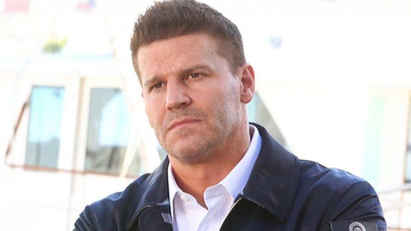 david boreanaz Seal Navy