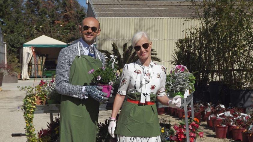 Ma come ti vesti?! 2017, Enzo Miccio e Carla Gozzi tornano con l'11 stagione: dal 9 maggio su Real Time